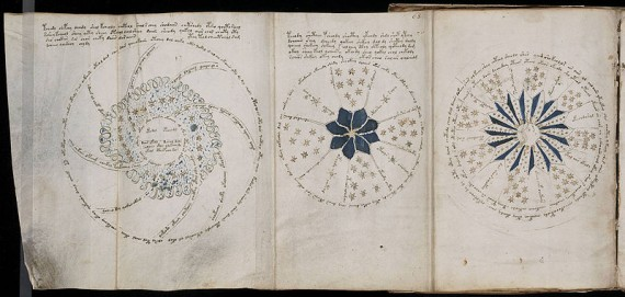 Voynich Flower Images
